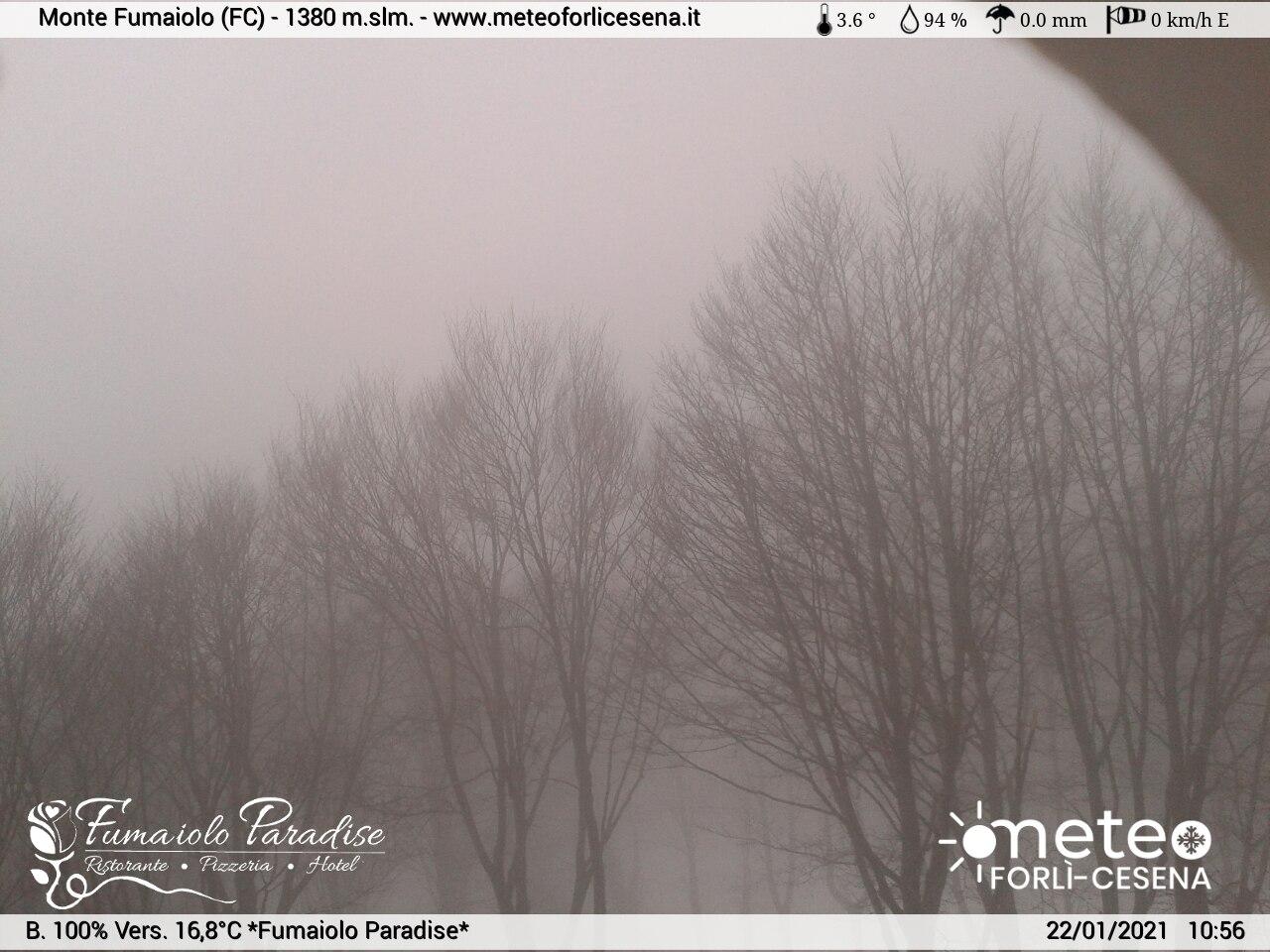 webcam monte Fumaiolo - rifugio Biancaneve